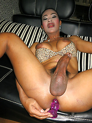 Big cocked Jasmine gets fucked