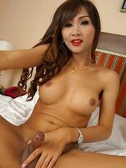 Bareback Shemale Sex With Nina